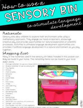 Sensory Bin Guide