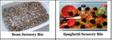 Sensory Bin Labels
