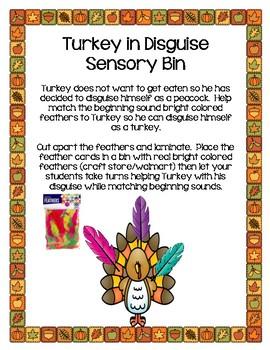 Beginning Sound-Turkey Feathers