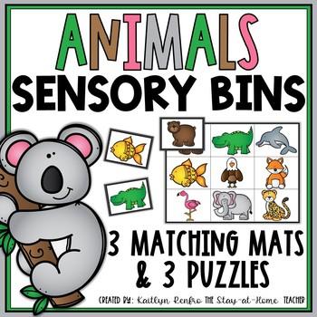 Sensory Bins for July