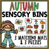 Fall Sensory Bin Matching Mats and Puzzles