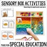 Sensory Box Activities for Special Education: Life Skills