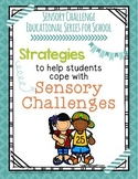 Sensory Challenge Educational Series for School