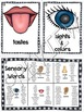 Sensory Details Descriptive Writing Activity
