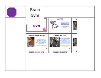 Sensory Gym