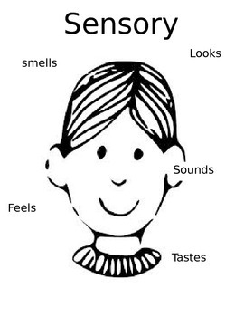 Sensory Images Graphic Organizer