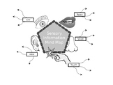 Sensory Information Mind Map