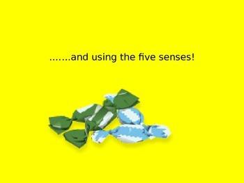 Sensory Language lesson