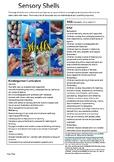 1 page Sensory Shells NQS< EYLF and Kindy Curriculum
