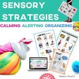 Sensory Strategies Starter Kit