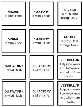 Sensory Systems Memory Game