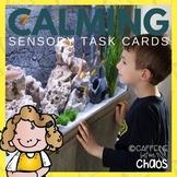Sensory Task Cards-Calming Activities