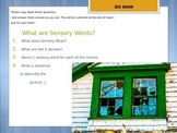 Sensory Words Power Point