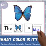 Sentence Building, Building Sentences Activity - What colo