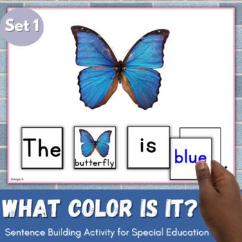 Sentence Building Activity - What color is it?