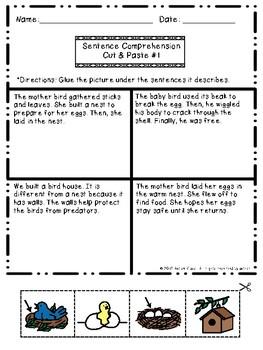 Sentence Comprehension: Three Sentences