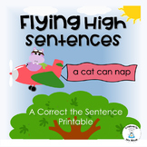 Sentence Correction - Flying High Sentences