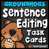 Sentence Editing Task Cards for Third Graders (Facts about
