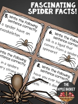 Sentence Editing Task Cards for Third Graders (spider fact themed)
