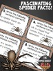 Sentence Editing Task Cards for Third Graders (spider fact
