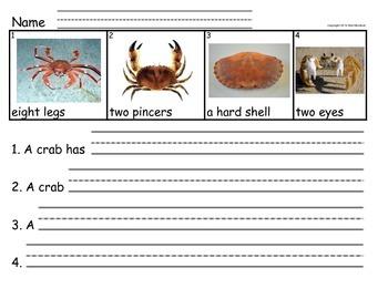 Sentence Frames for Writing Success - Sea Creatures 2