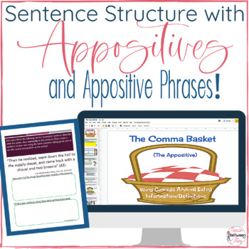 sentence structure with the appositive the comma basket tpt