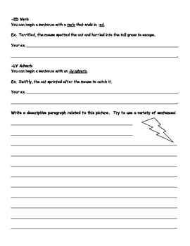 Sentence Variety Worksheet