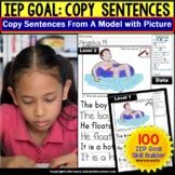 Sentence Writing | IEP Goal Skill Builder Fine Motor Skill