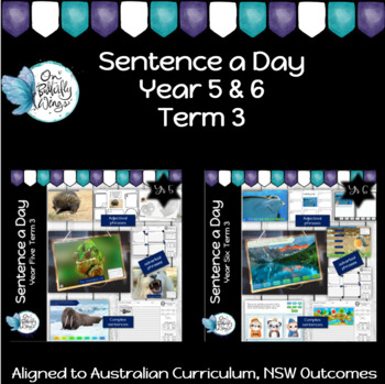 Sentence a Day - Year 5 and 6- Term 3