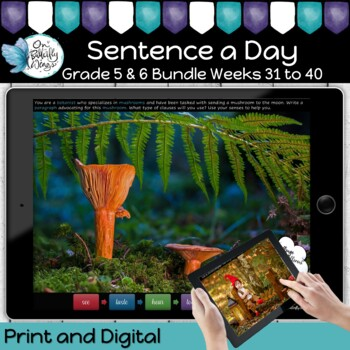 Sentence a Day Year 5 and 6 Term 4