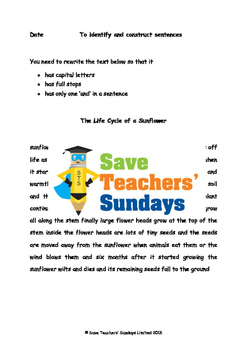 Sentence construction Worksheets on Life cycle of a sunflo