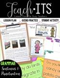 Sentences and Punctuation Lesson Plan