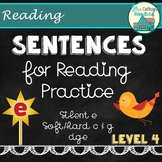 Sentences for Reading Practice with Silent e Set 4