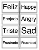 Sentimientos (flash cards)