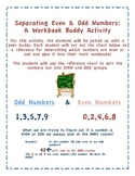 Separating Even & Odd Numbers: A Workbook Buddy Activity