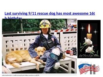 September 11th Rescue Dog Birthday Treat