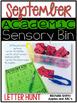 September Sensory Bin