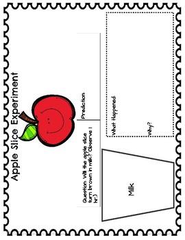September Apple Slice Experiment!
