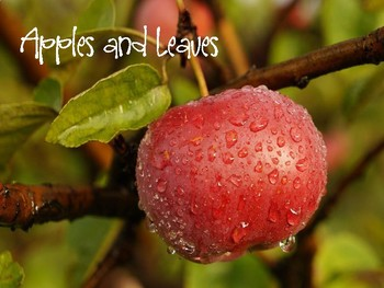 September Apples and Leaves Vocabulary Lesson Plans