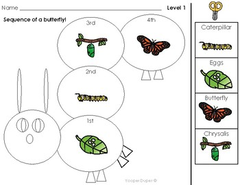 Sequence A Butterfly Life Cycle