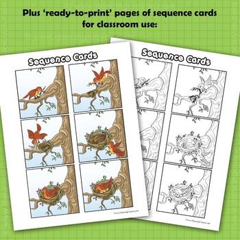 Sequence Cards and Clip Art- Bird Building a Bird's Nest