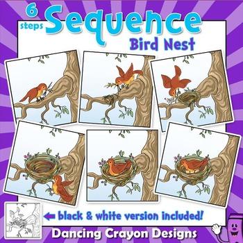 Sequence Cards - Bird Nest