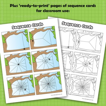 Sequence Cards And Clip Art Spider Spinning A Web By
