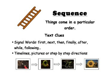 Sequence Text Structure Poster