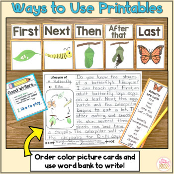 Sequence Writing Prompts - Plant and Animal Life Cycles