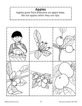 Sequencing: Apples