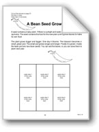 Sequencing: Bean Seed and Apple
