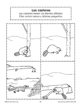 Sequencing: Beavers