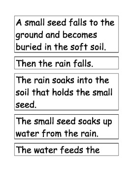 Sequencing Cards - A Seed Grows