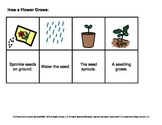 Sequencing Cards (Life Cycles)